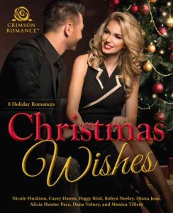 Christmas Wishes romantic cover