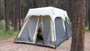 Tent in Banff Canada