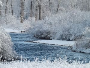 Clark Fork River Ice and Snow