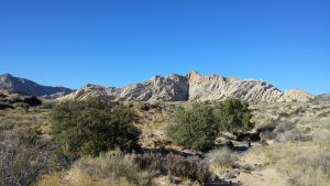 From Snow Canyon UT